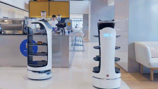 Chinas Pudu Robotics