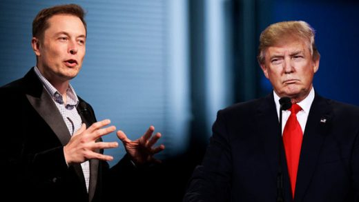 Donald Trump Elon Musk