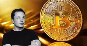 Elon Musk's Bitcoin