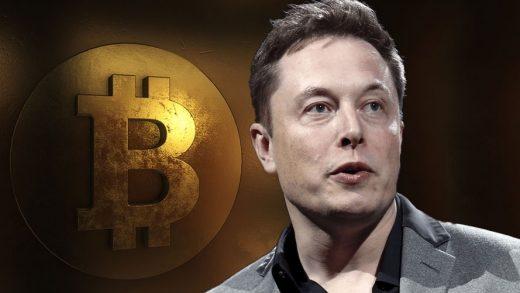 Bitcoin Elon Musk's