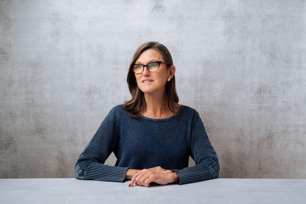 Cathie Wood says Elon Musk bitcoin