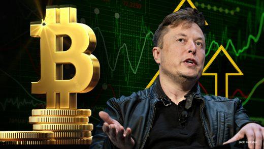 Bitcoin Elon Musk