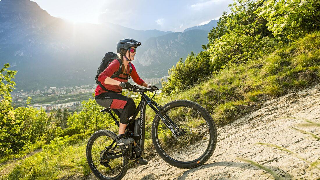 Swiss electric bike FLYER US, European e-bike