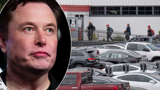 More Tesla employees say they were fired for staying home over COVID-19 fears even though CEO Elon Musk said they could