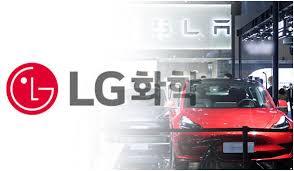 Tesla Model Y LG Chem