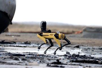 SpaceX Boston Dynamics
